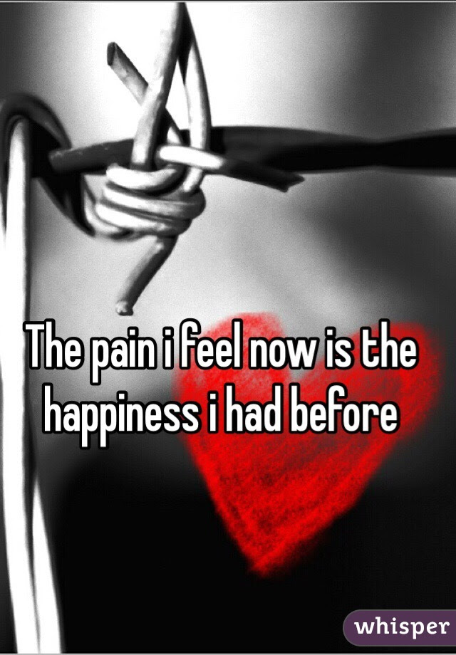 The Pain I Feel Now Is The Happiness I Had Before