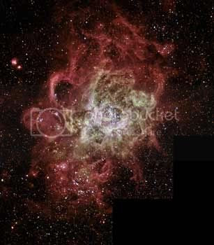 star birth Pictures, Images and Photos