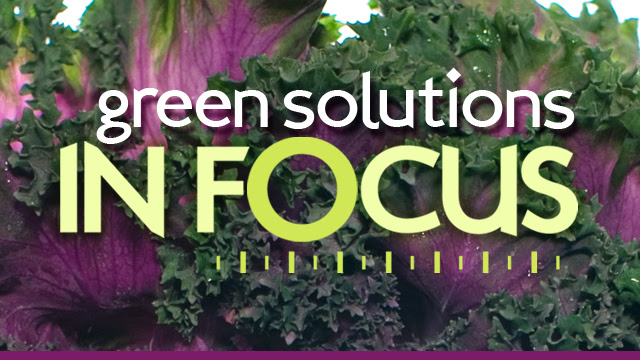 Green Solutions In Focus