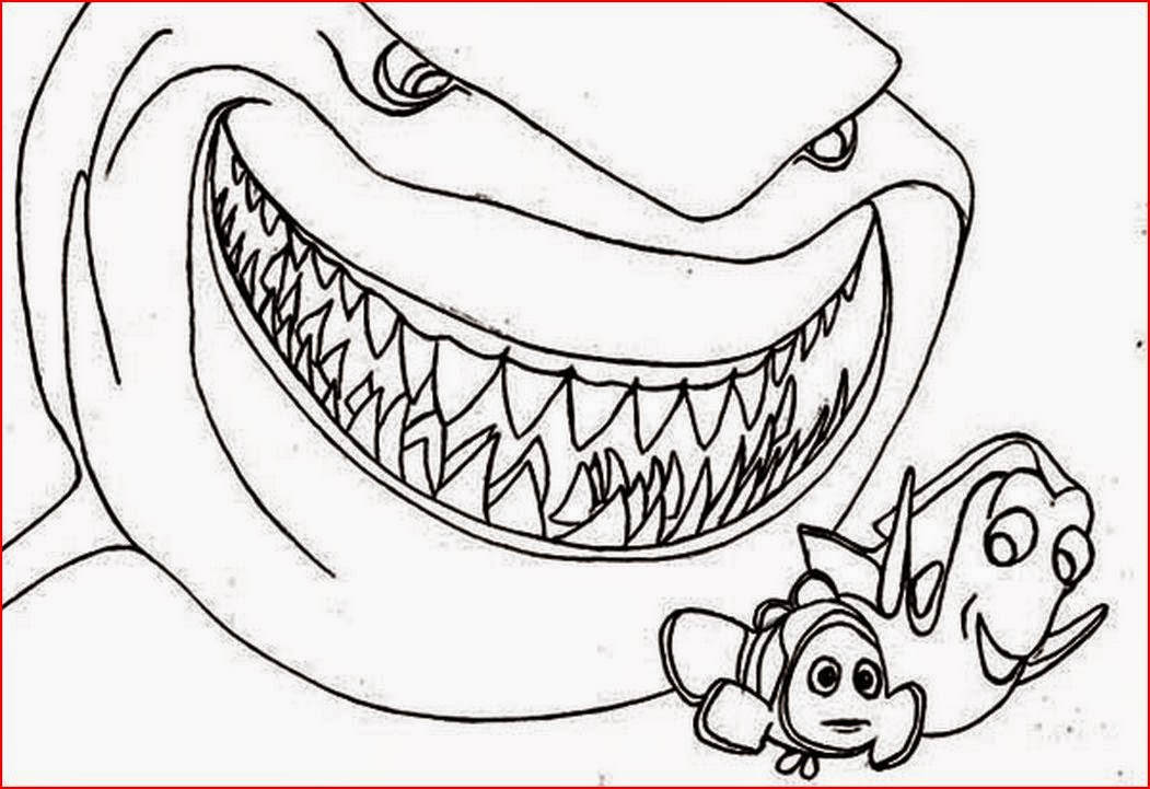 Shark Jaw Drawing at GetDrawings | Free download