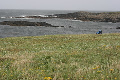 Inspecting the Machair