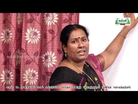 11th Maths சேர்ப்பியல் (ம)கணிதத்தொகுத்தறிதல் அலகு 4  பகுதி 6 TM Kalvi TV