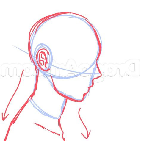 drawing side  face anime  side view male anime face