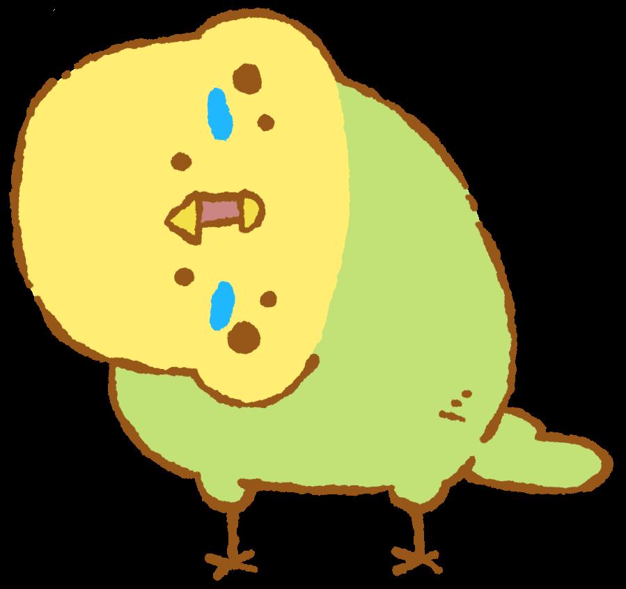 Inconfuocoインコンフォーコ小鳥まみれのイラストblog