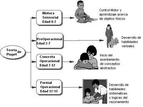 El desarrollo cognitivo según Piaget