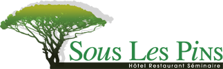 Hôtel Restaurant Séminaire à étoile Sur Rhône Sous Les