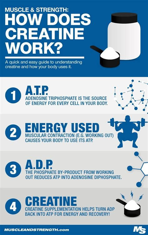creatine monohydrate benefits side effects dosages