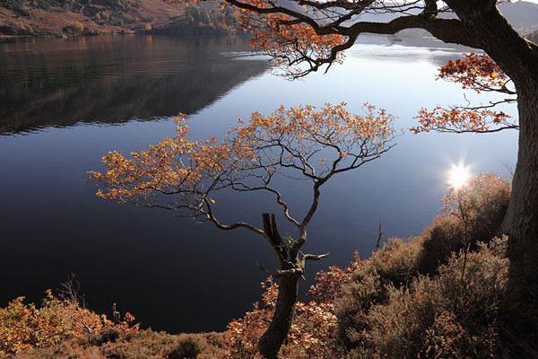 04D-0404 Autumn Trees Ullswater Lake District Cumbria UK