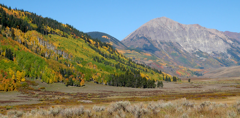 East slopes of Crested Butte with 12,625 foot Gothic Mountain rising in the background.