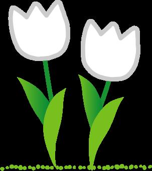 チューリップ 春のイラスト 無料素材