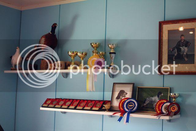 photo palkintoja_zps46d2d601.jpg