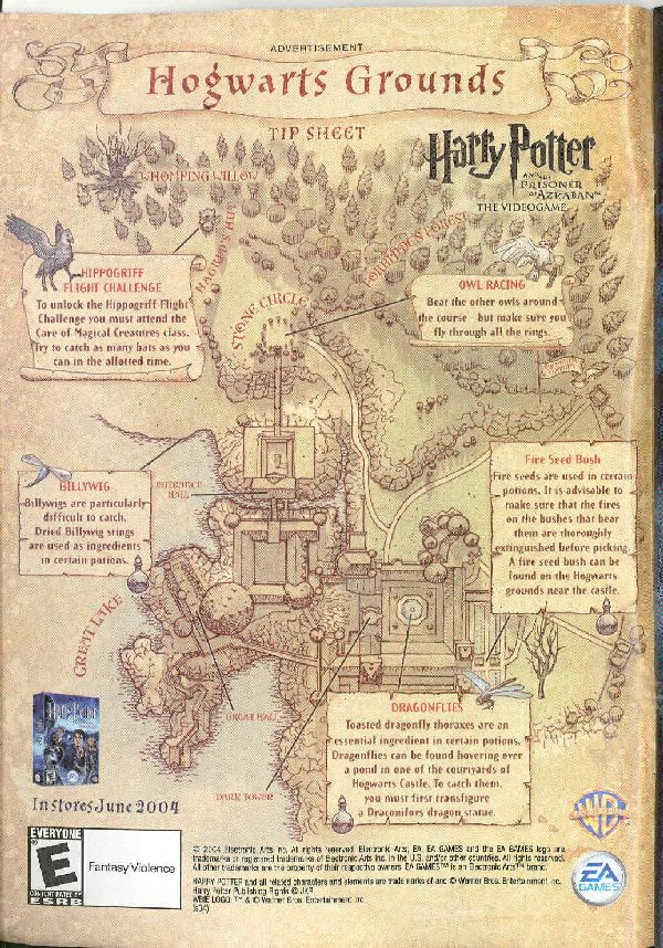 map of hogwarts grounds. Many of the details on this map are not canon.