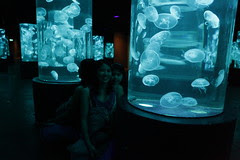 [03062010] Manila Ocean Park: Jelly Fish