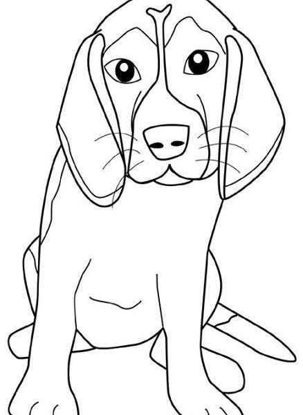 Disegni Da Colorare Cani Segugio Coloratutto Website