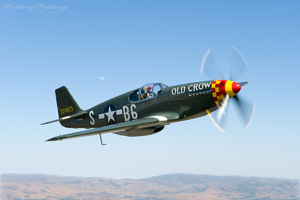 Art of Ron Cole amp; Cole39;s Aircraft: Anatomy of a P51 Mustang ...