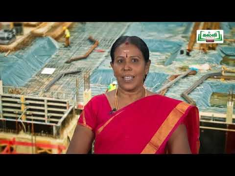 வகுப்பு 10 தமிழ் 9 மனிதம் ஆளுமை கவிதைப் பேழை சித்தாளு Kalvi TV