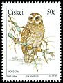 Cl: African Wood-Owl (Strix woodfordii) SG 180 (1991)