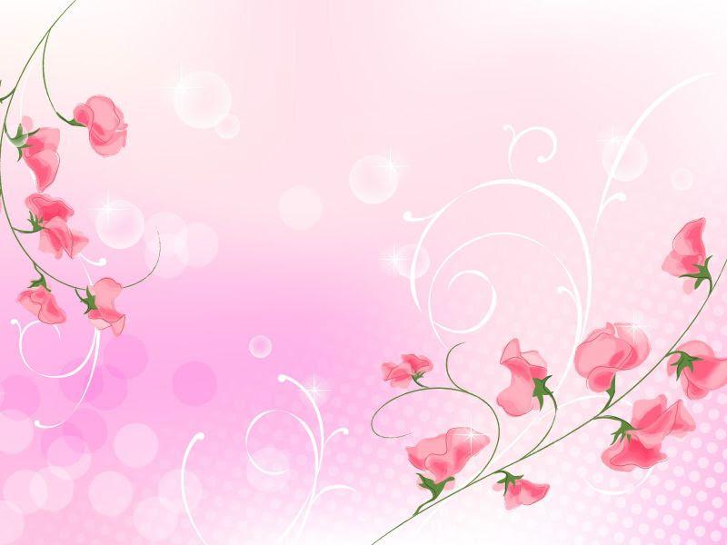 Fondos De Pantalla De Flores Rosa 8 Wallpapers De Flores Rosa 8