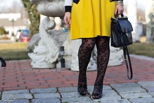 leopard tights-2.jpg