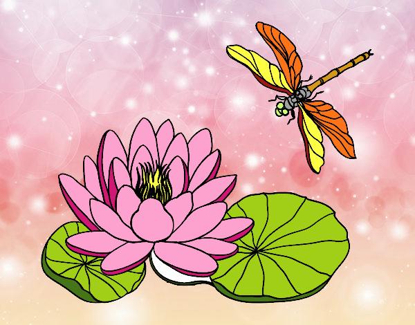 Dibujo De Flor De Loto Pintado Por Estrellado En Dibujosnet El Día