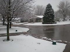 Snow at Mom's