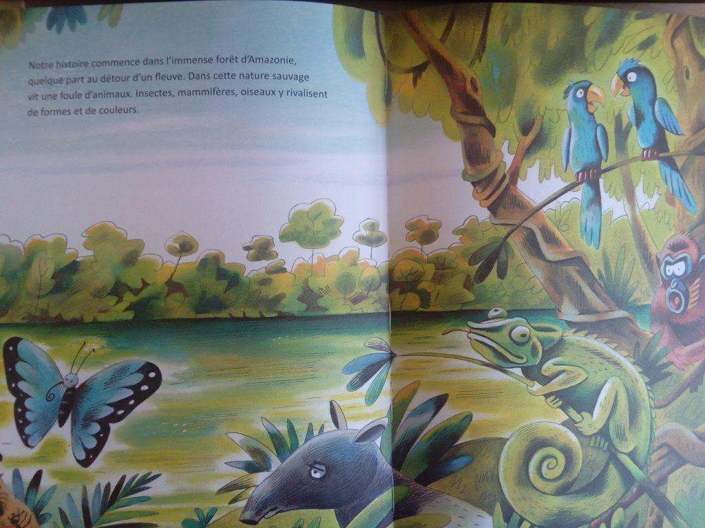 livre légende colibris