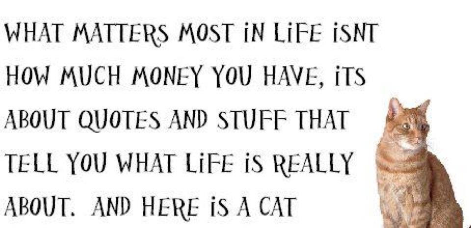 What Matters Most In Life Funny
