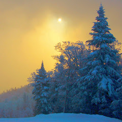 sunrise trail new years eve