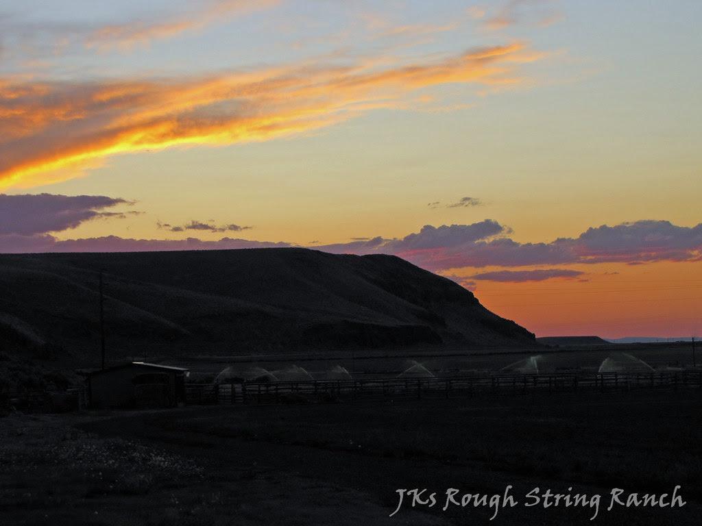 Summer Sunset 1/2