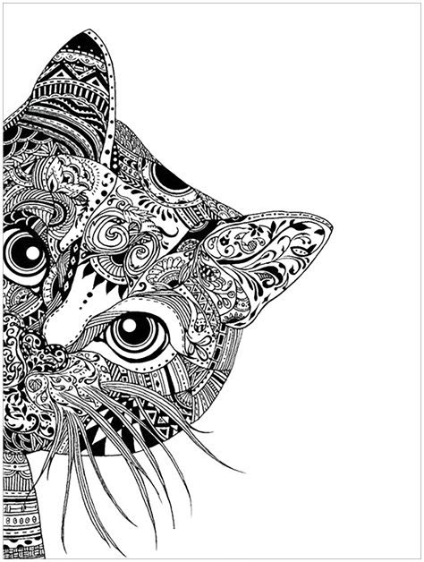 animals coloring pages  adults coloring pages