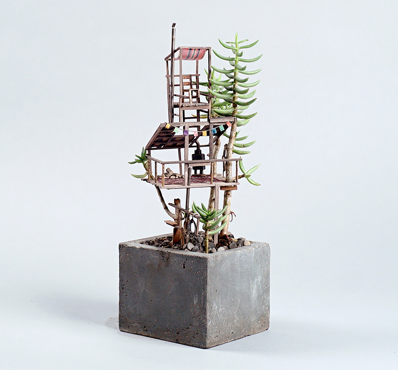 jedediah-corwyn-voltz-somewhere-small-succulent-and-cacti-treehouses-designboom-01