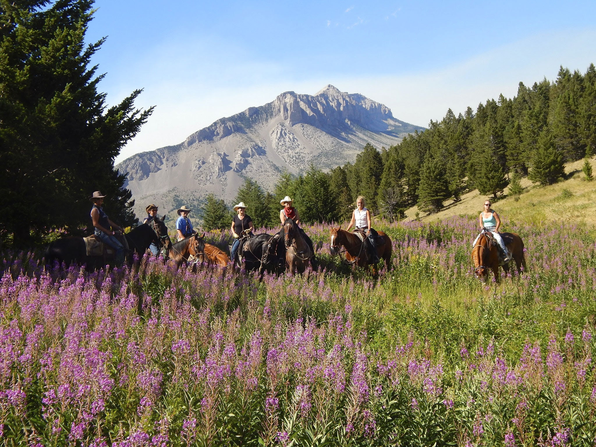 Americas Best Dude Ranches That Even City Slickers Will