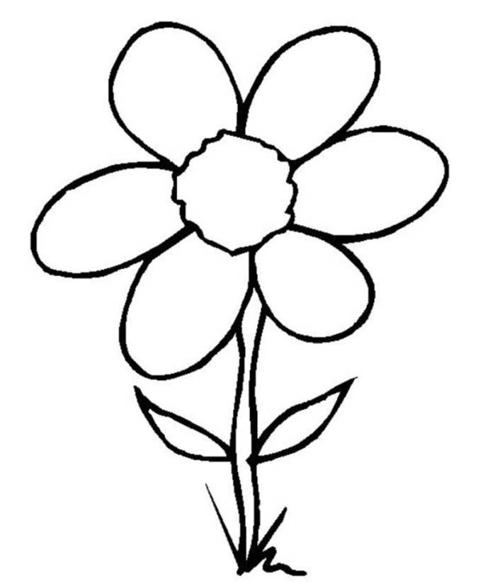 How To Draw A Simple Flower For Children Clipart Best