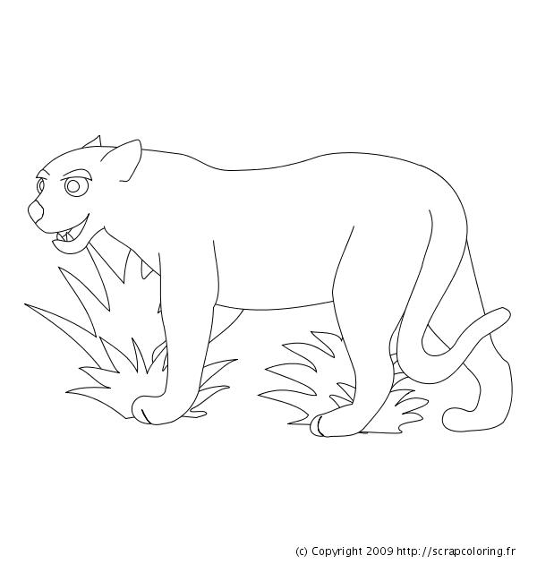 Coloriage Jaguar Léopard Ou Panthère