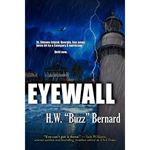 cover of novel Eyewall