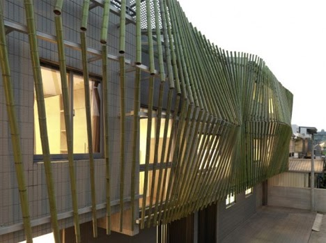 Delight By Design: Forest Facade: Bamboo Shoots Up, Shades ...