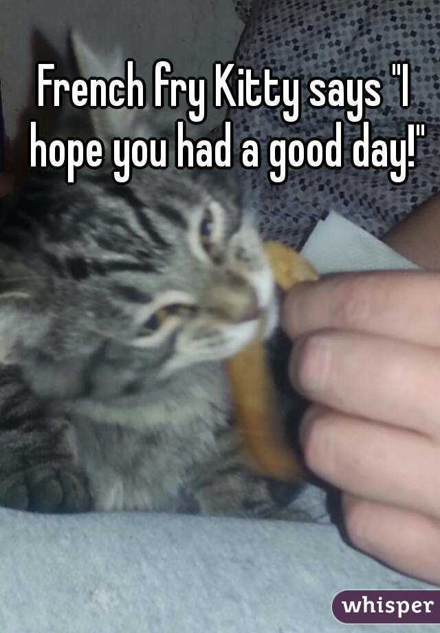 French Fry Kitty Says I Hope You Had A Good Day