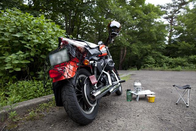 Harley Davidson XL 883R 058