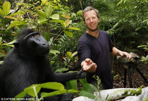 Usted puede estar en esta también: El mono, incluso tomó una foto con el fotógrafo David Slater en el marco