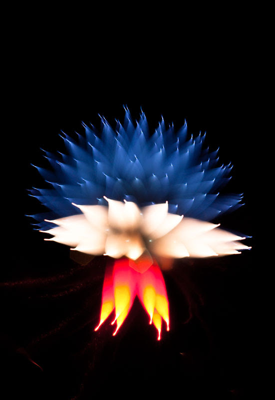 fireworks photography 6