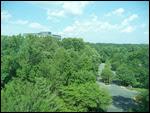 Het groene uitzicht uit het hotel 8 hoog