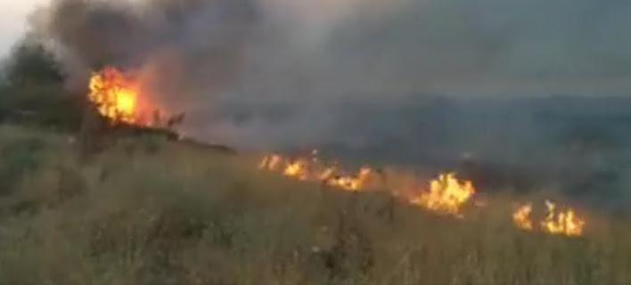 Αλβανία: Πύρινος εφιάλτης για ελληνικά χωριά -Εστειλε βοήθεια η Ελλάδα [εικόνες & βίντεο]
