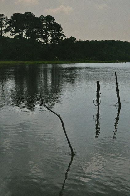 Parker's Creek (2)