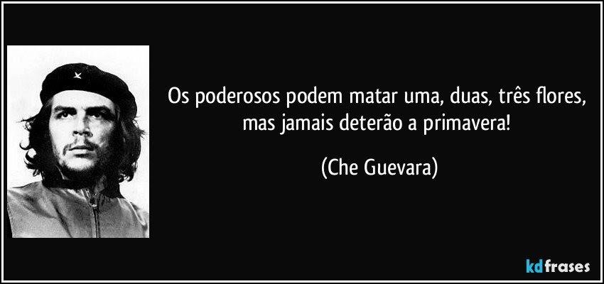 Os poderosos podem matar uma, duas, três flores, mas jamais deterão a primavera! (Che Guevara)