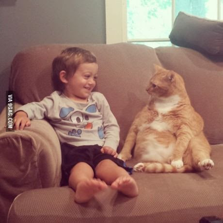 A chat with a cat!   #lol #funny #humor #cats