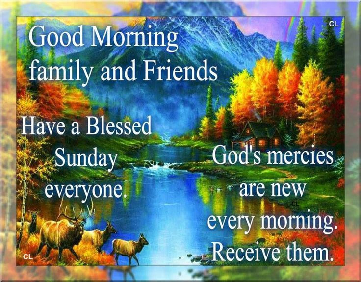 Good Morning Family Friends Have A Blessed Sunday Everyone
