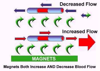Blood flow - Magnets