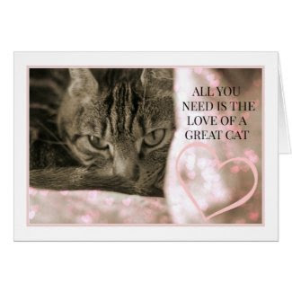 All You Need Is The Love of a Great Cat