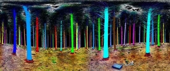 Unificação satélite-celular permite produzir mais madeira com menos árvores