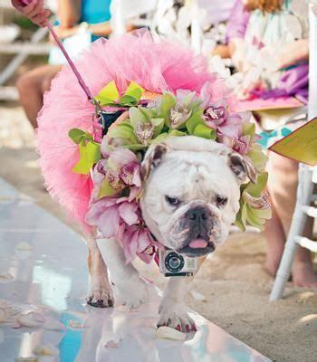 20 best GoPro Wedding images on Pinterest   Gopro camera